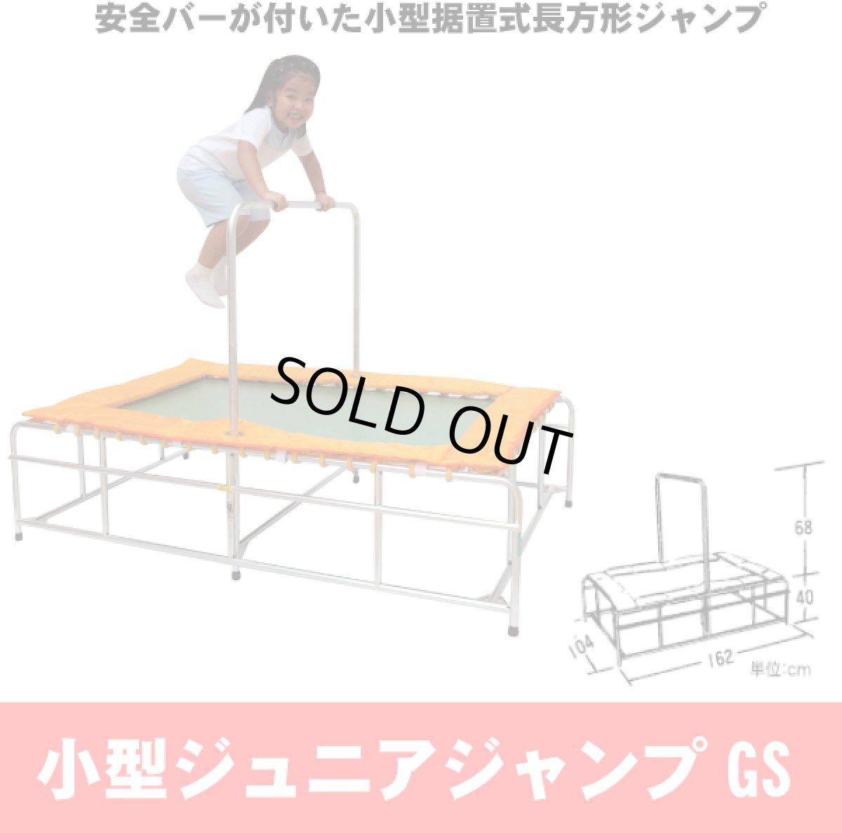 画像1: 小型ジュニアジャンプ (1)